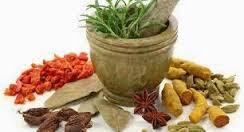 Obat Tradisional Penyakit Herpes Gatal Bentol Bentol Berair