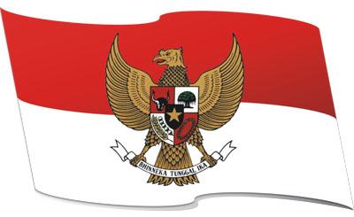 perkembangan iptek indonesia