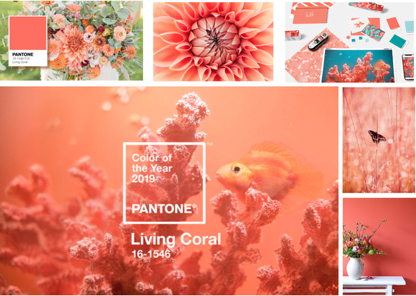 Colour of the Year 2019: Living Coral