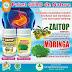 Obat Asam Lambung Tinggi (GERD) Herbal de Nature