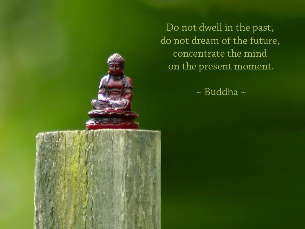 Inspirational Buddha Quotes: Inspirational Desktop Wallpaper: November 2010