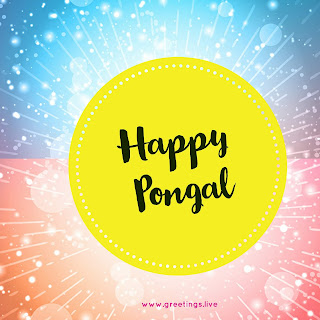 Free Exclusive Pongal festival wishes images