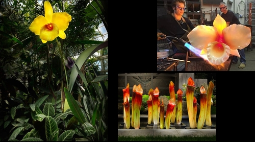 00-Jason-Gamrath-Giant-Glass-Orchids-and-other-Flowers-Sculptures-www-designstack-co