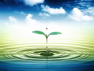 Dịch vụ cung cấp nước sạch