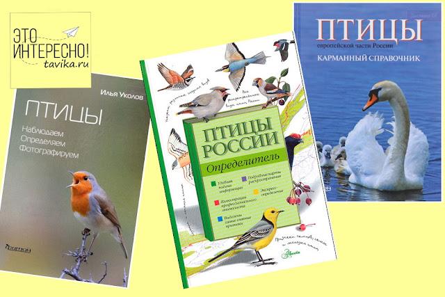 список книг о птицах для юных натуралистов