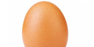 lets talk egg