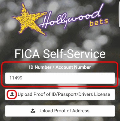 Enter your ID number or Account number into the field. Then click Upload Proof of ID.