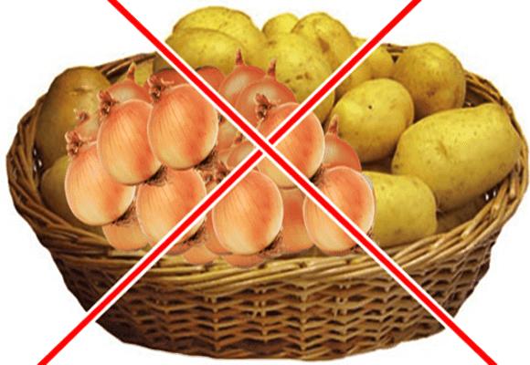 Geladeira-fora-batatas-e-cebolas