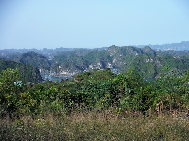 cat ba view halong bay vietnam