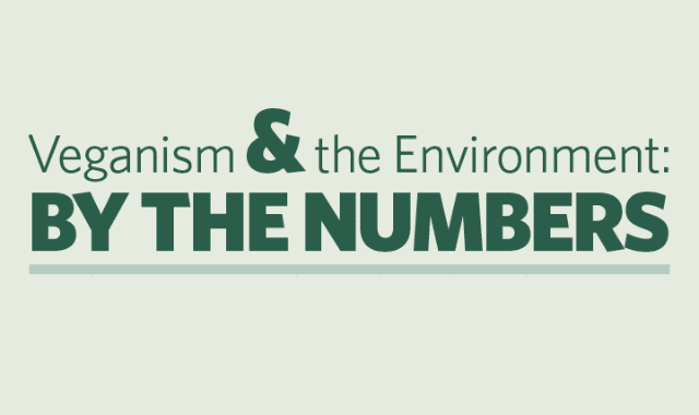 Veganism & The Environment: by the numbers