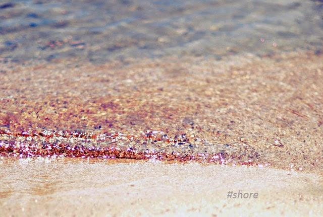 lake shore, lakeshore