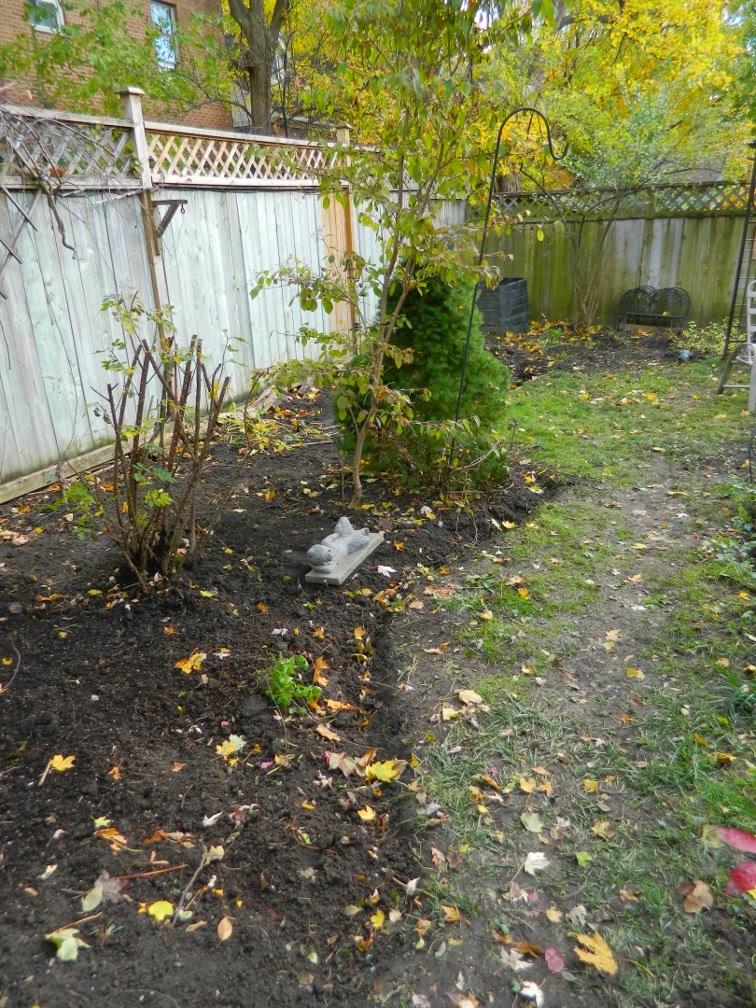Toronto garden cleanup Annex Paul Jung Gardening Services side after