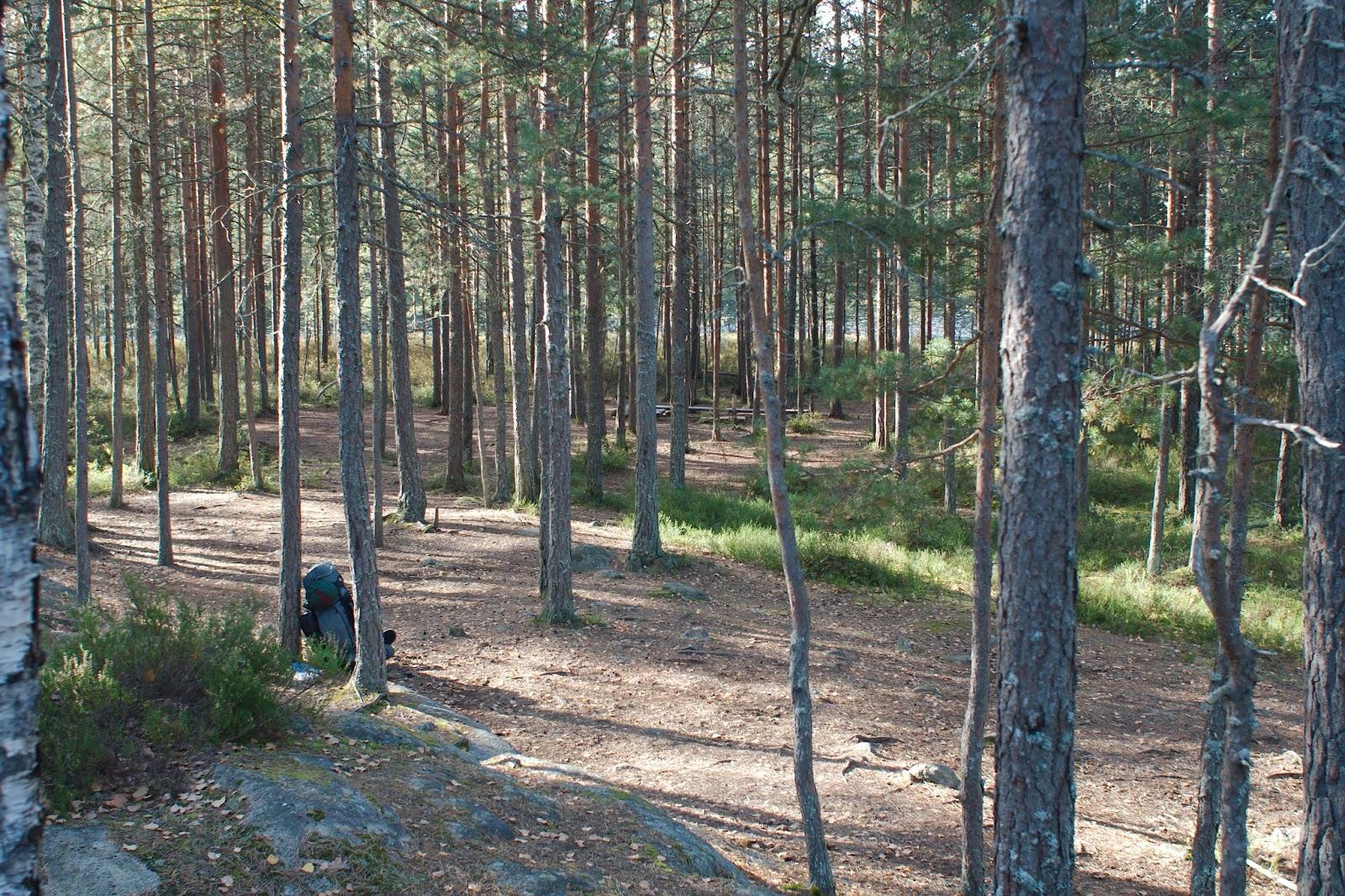 Iso-Holman leririntäalue