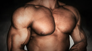 Membuat badan kekar dan tubuh atletis dengan dada tebal