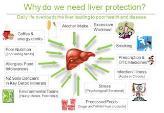 Liver Care Tips