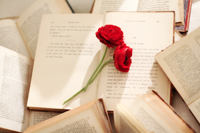 Book with red flowers