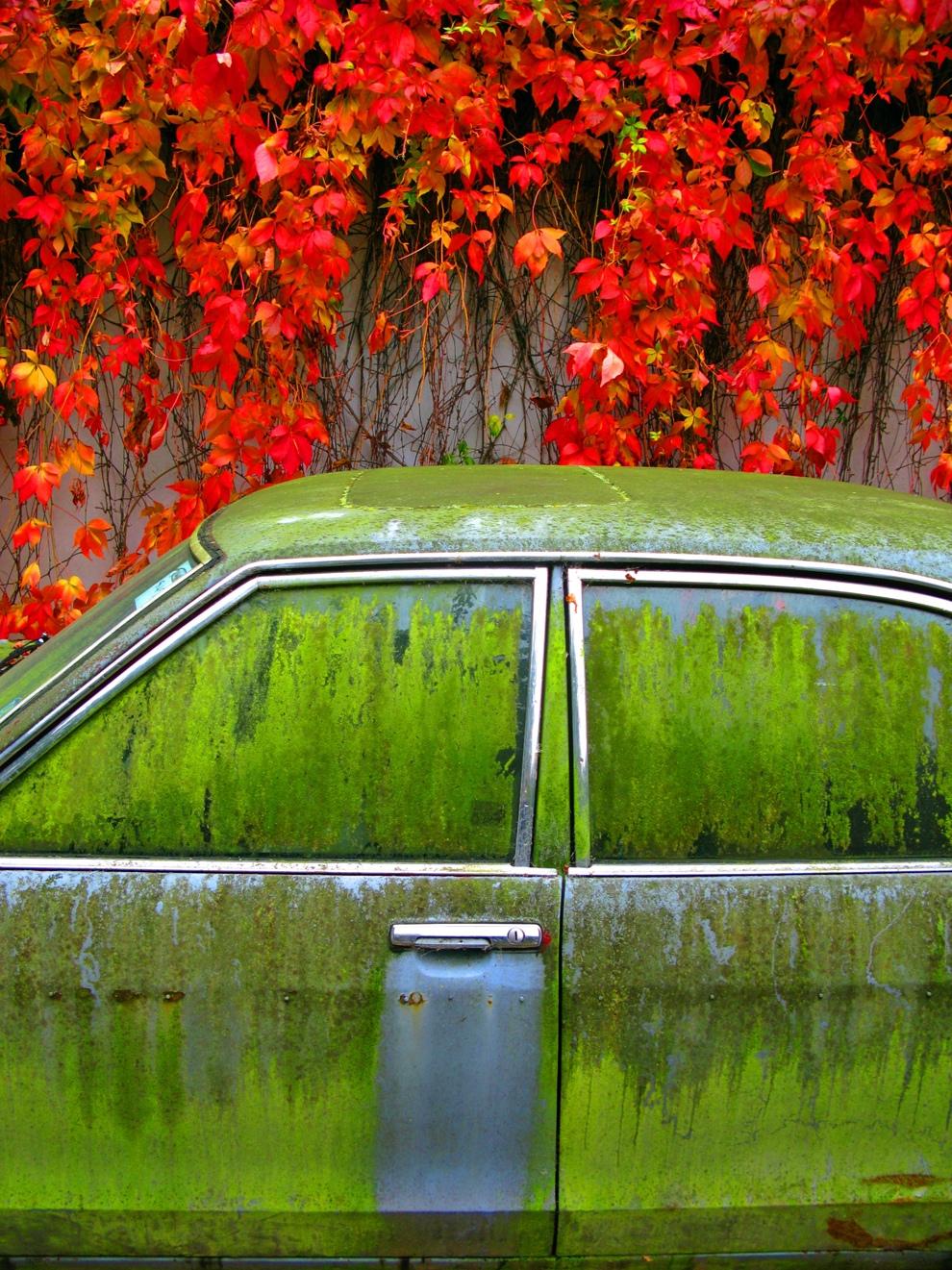 سيارة قديمة