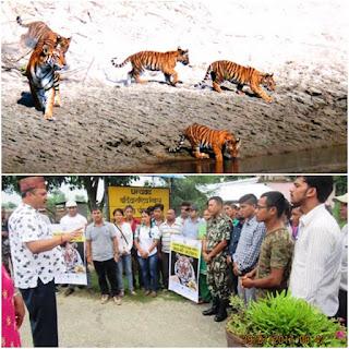 बांके र बर्दियामा बाघ दिवस मनाईयो, दुई जिल्लामा बाघको संख्या ७५ भन्दा बढि पुग्यो