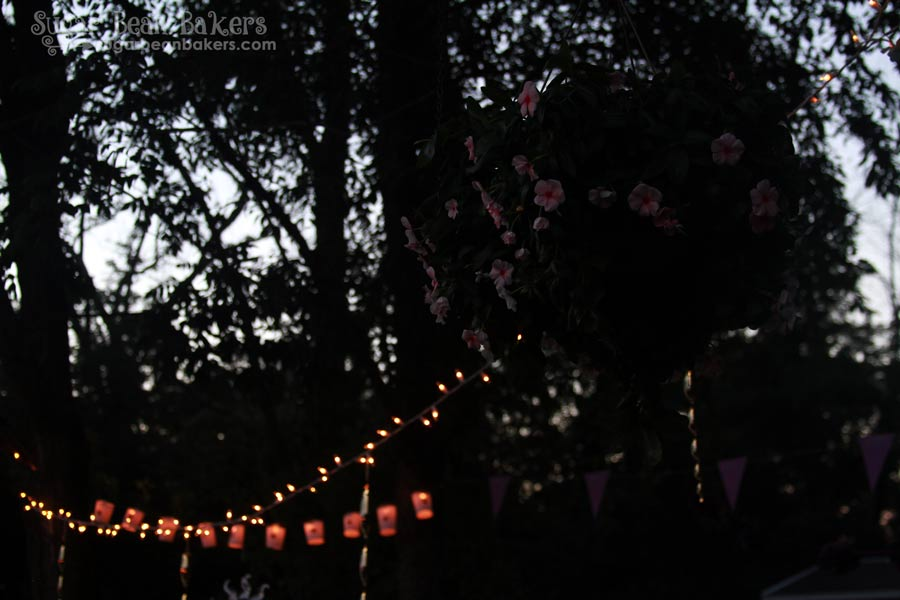 Sugar Bean Bakers: { Simple Tangled Party }
