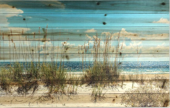 Sand Dunes Beach Print on Wood