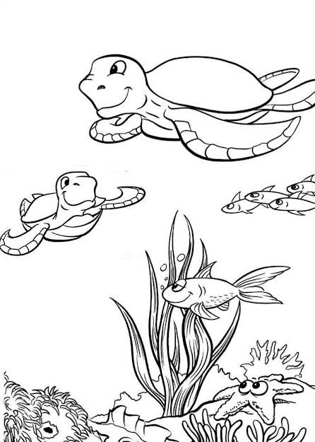 This Is Sea Turtle Coloring Pages And Book  You Can Download And