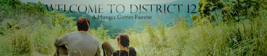 Welcome to District 12
