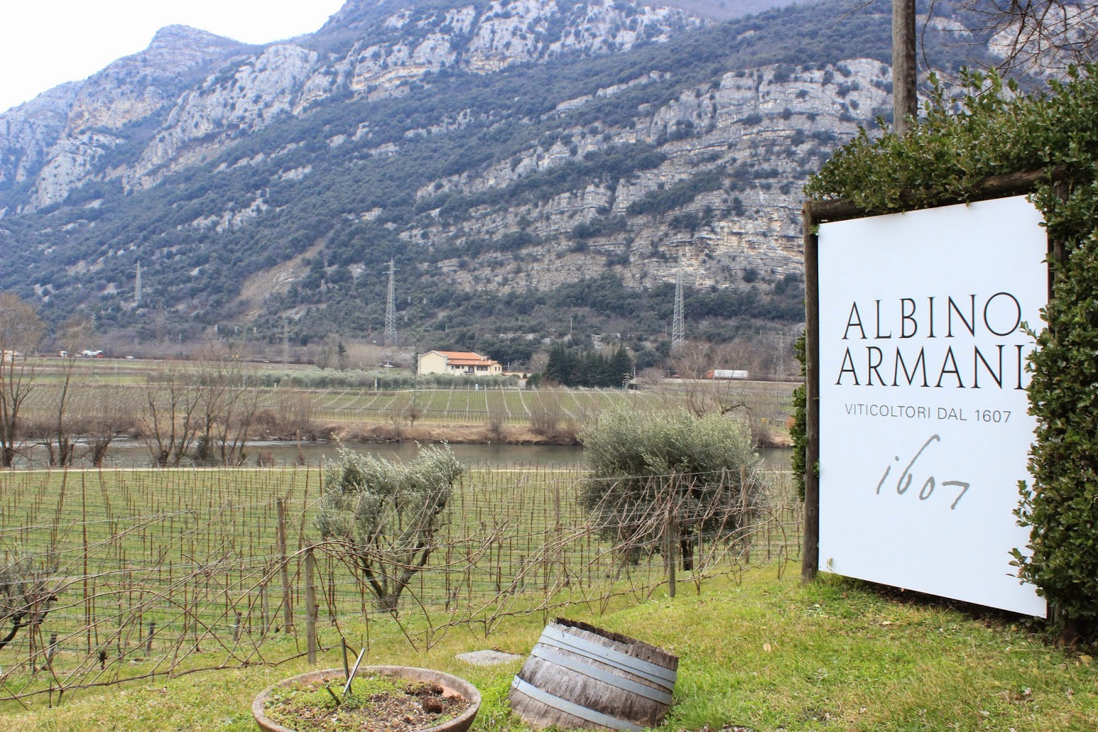 Albino Armani winery in Dolce, Italy