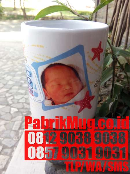 MUG PRINTING FOR FUN AND PROFIT FROM HOME DVD JAKARTA