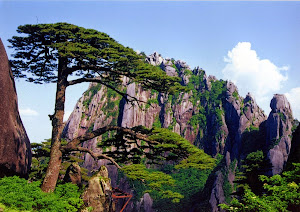 HUANGSHAN SCENIC AREA