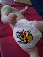 cloth nappies, real nappy week 2012, pirate duck, wee notions