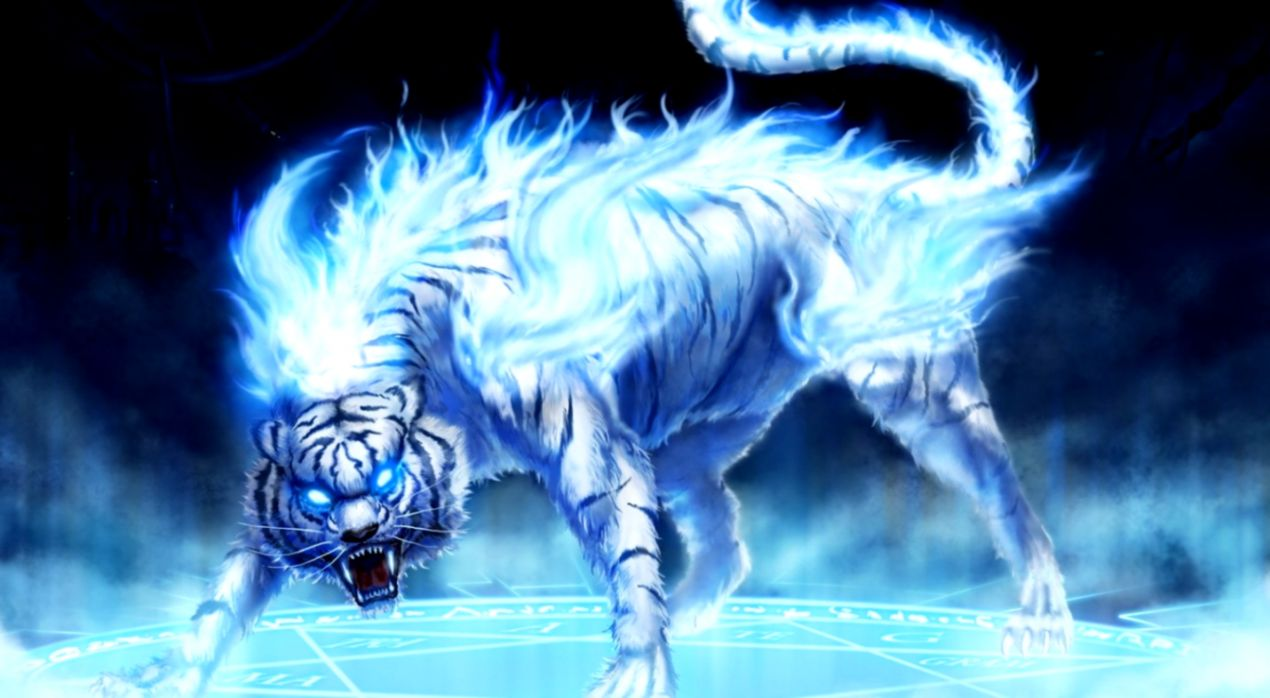 Free Tiger Hd Wallpapers Download 3d