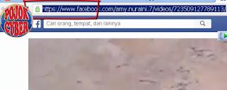 3. Perhatikan URL video dari jendela atau tab yang baru terbuka