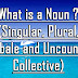 What is a Noun ? (Singular, Plural, Countbale and Uncountable, Collective)