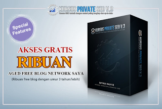 Kursus Private SEO V3