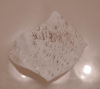 cara menghilangkan komedo secara alami