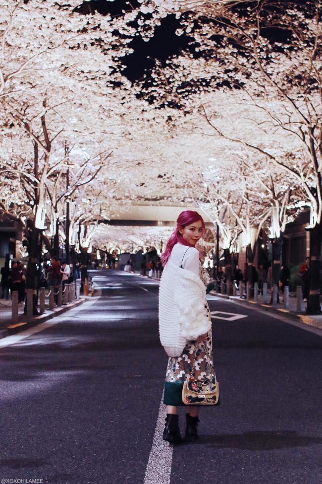 Japanese Fashion/lifestyle blogger,MizuhoK,LIFE STYLE || 2 MONTH UPDATE  [2/6] ROPPINGI SAKURA