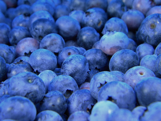 How to Make Blueberry Wine, The Perfect Summer Drink
