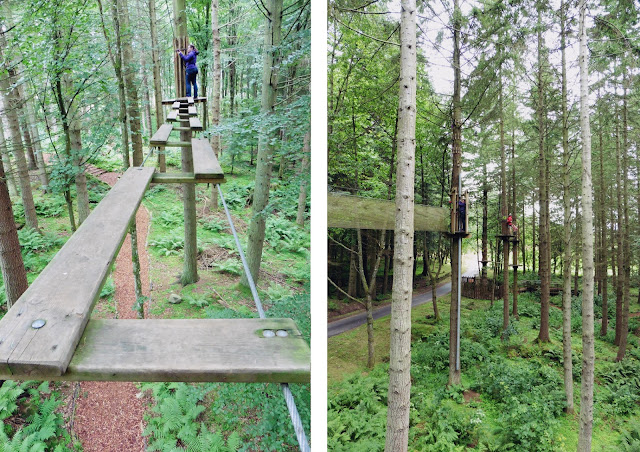 In the trees - Go Ape at Crathes Castle