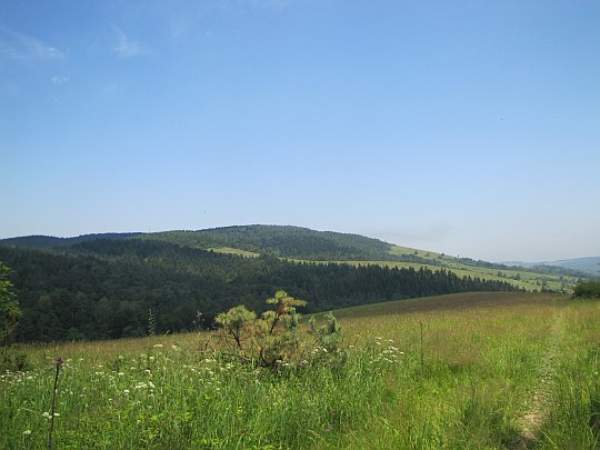 Widok na Tokarnię (778 m n.p.m.).