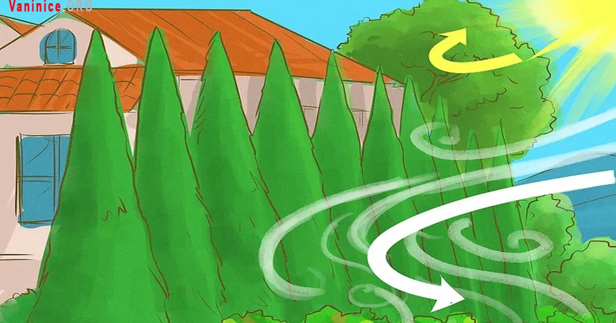 giáo án bảo vệ môi trường và tài nguyên thiên nhiên,  các biện pháp bảo vệ môi trường và tài nguyên thiên nhiên,  vì sao phải bảo vệ môi trường và tài nguyên thiên nhiên gdcd 7,  những việc làm bảo vệ tài nguyên thiên nhiên,  vai trò của môi trường và tài nguyên thiên nhiên gdcd 7,  mối quan hệ giữa môi trường và tài nguyên thiên nhiên gdcd 7,  môi trường và tài nguyên thiên nhiên có tầm quan trọng như thế nào đối với đời sống con người,  biện pháp bảo vệ tài nguyên thiên nhiên,