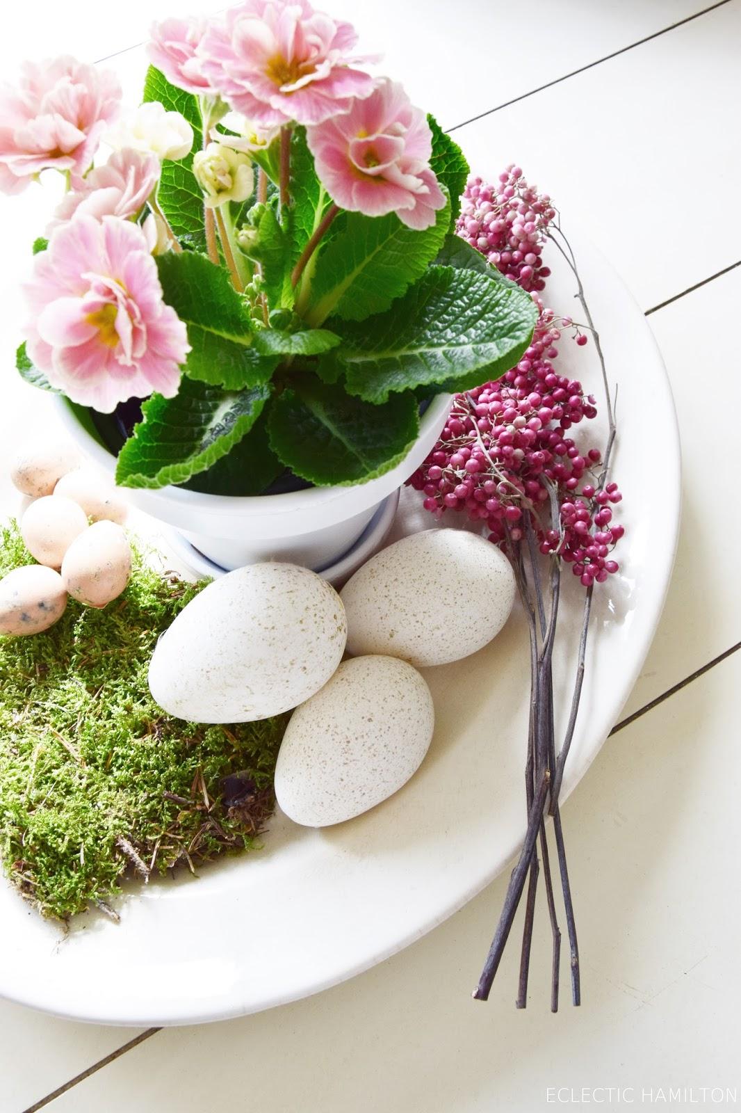Deko für den Frühling mit der gefüllten Primel, Rosenprimel, Moos, Wachteleier und Bellies. Dekoidee, dekorien mit Natur, Frühlingsdeko frisch und grün, rosa. Tischdeko