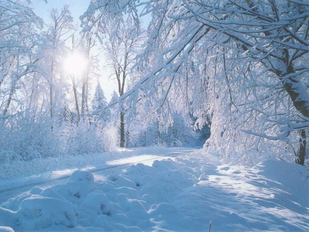 find beautiful winter wallpapers - photo #2
