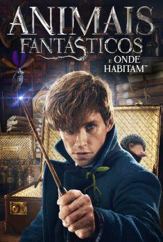 Animais Fantásticos e Onde Habitam Torrent – BluRay 720p/1080p Dual Áudio