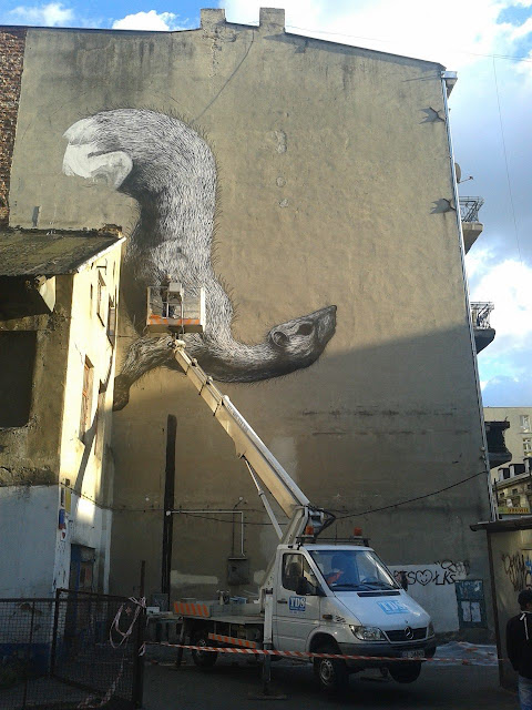Street Artist ROA Working on a New Mural in Lodz, Poland for Fundacja Urban Forms. 4