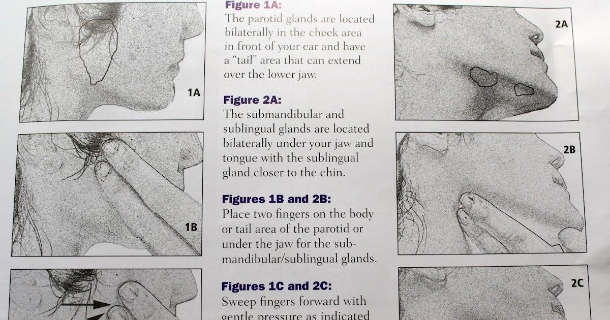 Blocked Salivary Gland Natural Treatment