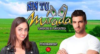 Telenovela Sin Tu Mirada