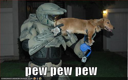 funny dog pics with guns - photo #1