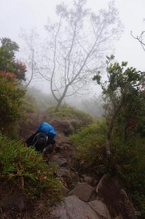 Jalur Pendakian Gunung Merapi - Pos II