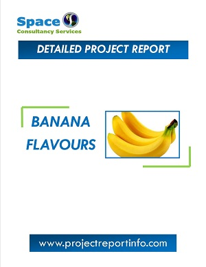 Banana Flavours Manufacturing Project Report