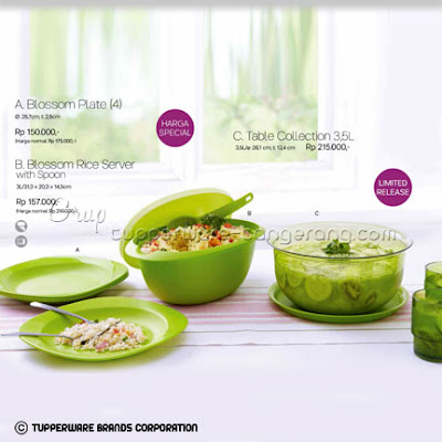 Blossom Plate, Rice Server, Table Collection ~ Katalog Tupperware Promo Mei 2016